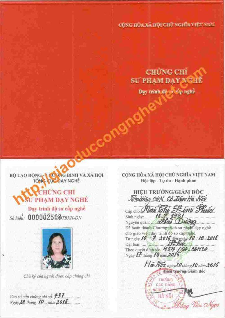 chứng chỉ nghiệp vụ sư phạm sơ cấp nghề