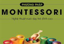 dao-tao-cap-chung-chi-giao-duc-mam-non-ung-dung-phuong-phap-montessori